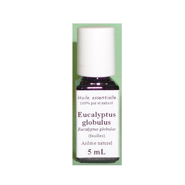 Huiles essentielles Eucalyptus globulus